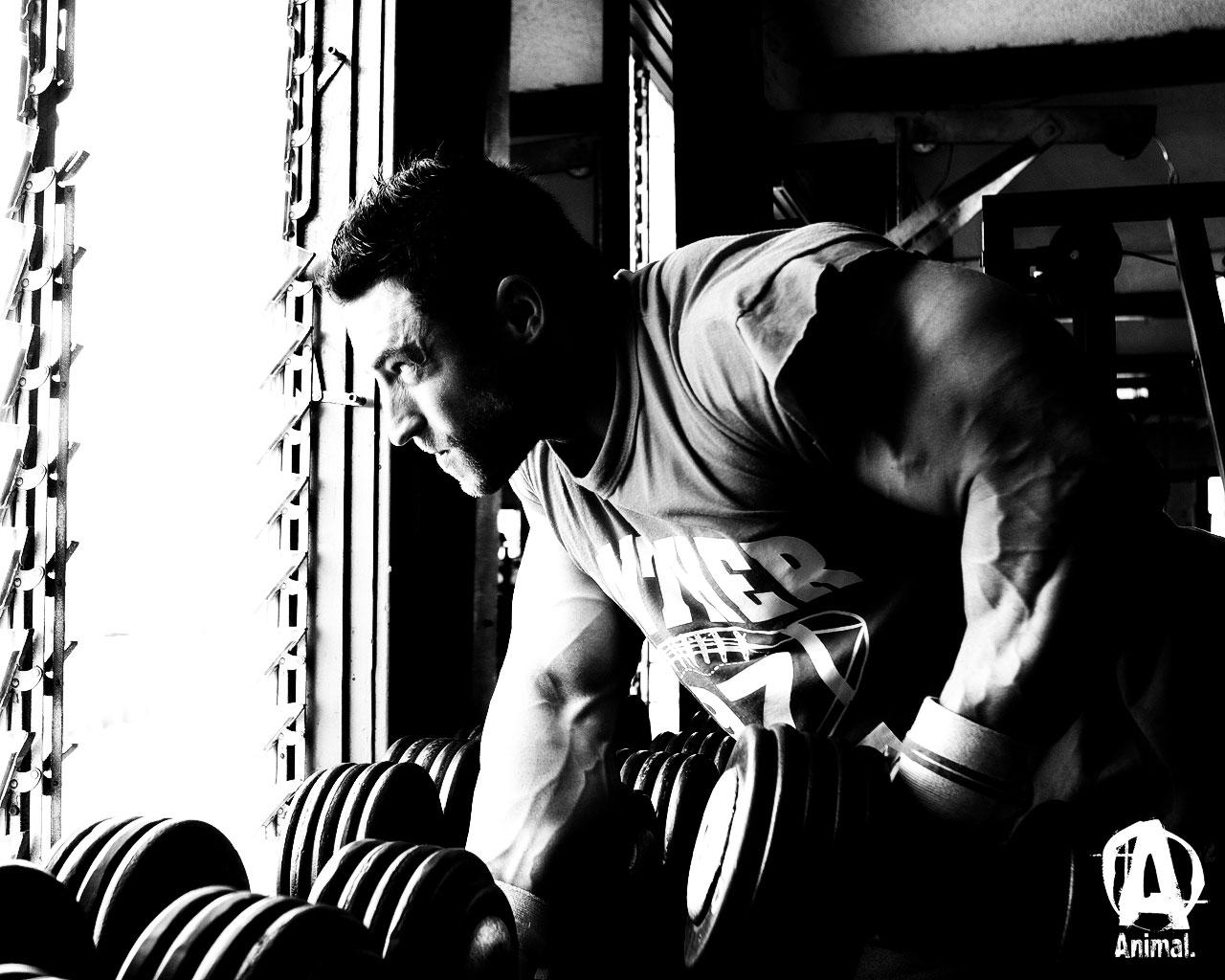 Bodybuilding.com Forums